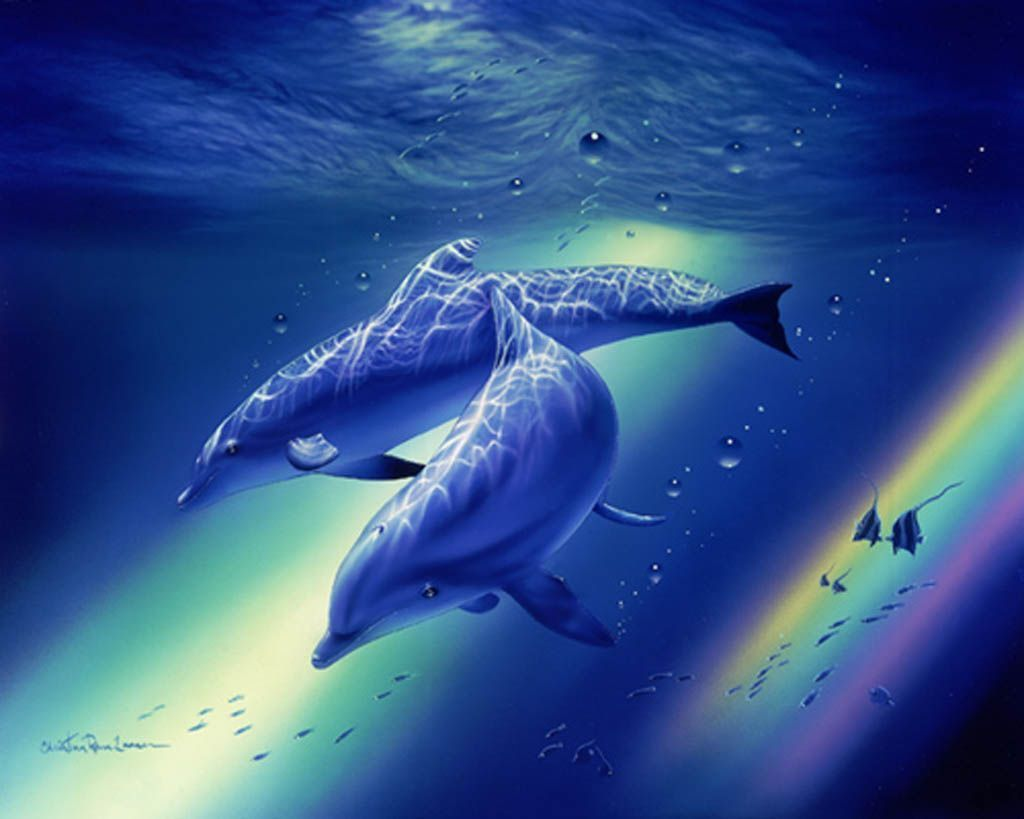 Images dauphin - Images dauphins a imprimer ...