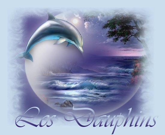 Image dauphin - Images dauphins a imprimer ...